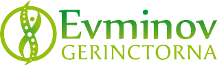 evminov-logo